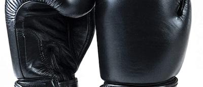 Drako boxing & Kickboxing Gloves review