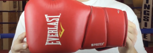 Everlast Elite Protex 2 Training Gloves
