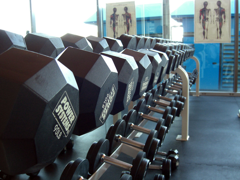 Rows of Dumbells in a gym - Kickboxing or Gym For Weight Loss